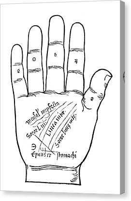 Palmistry Chart, 1531 Canvas Print by Granger
