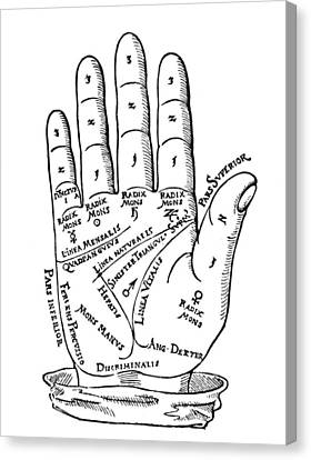 Palmistry Chart, 1560 Canvas Print by Granger