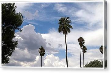 Palms And Clouds Canvas Print by Glenn McCarthy Art and Photography