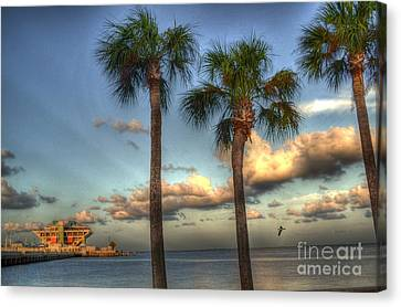 Palms At The Pier Canvas Print