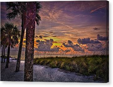 Palms Down To The Beach Canvas Print by Marvin Spates
