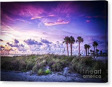 Palms On The Beach Canvas Print by Marvin Spates