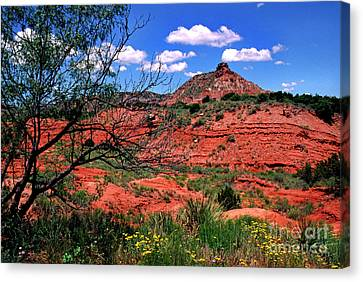 Palo Duro Canyon State Park Canvas Print by Thomas R Fletcher