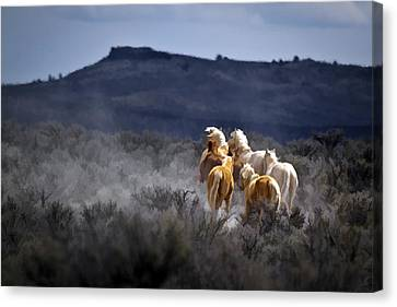 Palomino Buttes Band D1482 Canvas Print by Wes and Dotty Weber