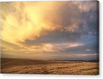 Palouse August Sunset Canvas Print