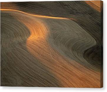 Palouse Contours II Canvas Print by Latah Trail Foundation