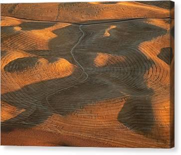 Contour Farming Canvas Print - Palouse Contours Iv by Latah Trail Foundation