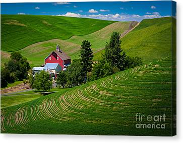 Palouse Farm Landscape Canvas Print