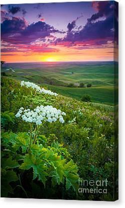Palouse Flowers Canvas Print by Inge Johnsson