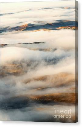 Palouse Fog Clears Canvas Print by Mike Dawson
