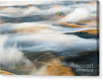 Palouse Gold Canvas Print by Mike Dawson