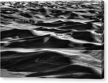Palouse In Black And White Canvas Print by Mark Kiver
