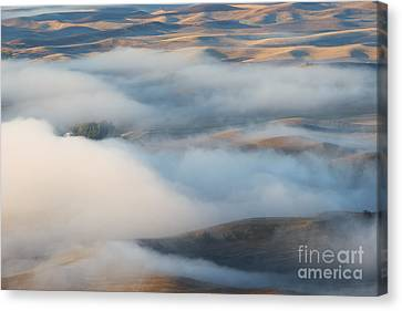 Palouse Morning Mist Canvas Print