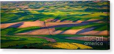 Palouse Ocean Of Wheat Canvas Print by Inge Johnsson