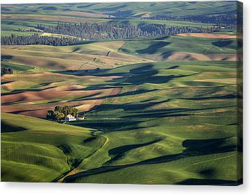 Palouse - Washington - Farms - #2 Canvas Print by Nikolyn McDonald