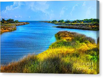 Pamlico Sound On Ocracoke Island Outer Banks Canvas Print by Dan Carmichael