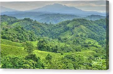 Panama Landscape Canvas Print by Heiko Koehrer-Wagner