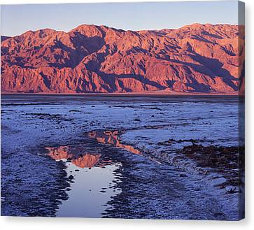 Panamint Reflection 2 Canvas Print