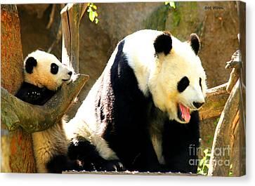 Panda Bear Mommy Talk Canvas Print by Tap On Photo
