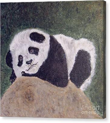 Panda Bear Sleepy Baby Cub Canvas Print by Ella Kaye Dickey