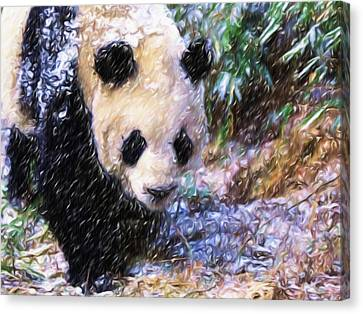 Panda Bear Walking In Forest Canvas Print by Lanjee Chee