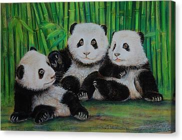 Panda Cubs Canvas Print