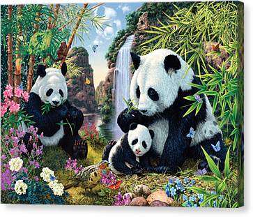 Harmonious Canvas Print - Panda Valley by Steve Read