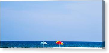 Panorama Beach Umbrellas  Canvas Print by Shelby  Young