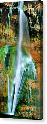 Canvas Print featuring the photograph Panorama Lower Calf Creek Falls Escalante Nm Utah by Dave Welling