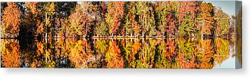 Panorama Of Fall Colors At Martin Dies Junior State Park - Jasper Piney Woods East Texas Canvas Print by Silvio Ligutti