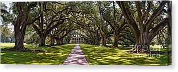 Panorama Of Oak Alley Plantation - Vacherie Louisiana Canvas Print by Silvio Ligutti