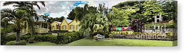 Panoramic Of Batik Studio In St  Kitts  Canvas Print by David Smith
