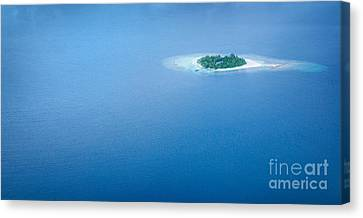 Tropical Bird Postcards Canvas Print - Panoramic Sea Background  by Anna Om
