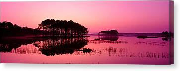 Chincoteague Canvas Print - Panoramic View Of The National Forest by Panoramic Images