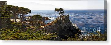 Panoramic View Of The Pacific Coastline At Pebble Beach Canvas Print