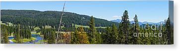 Panoramic Yellowstone Landscape Canvas Print by Jennifer White