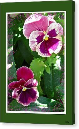 Pansey Pink Easter Card Canvas Print by Debra     Vatalaro