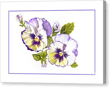 Pansies For Ree Canvas Print by Joan A Hamilton