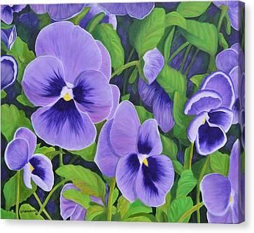 Pansies Schmanzies Canvas Print by Donna  Manaraze