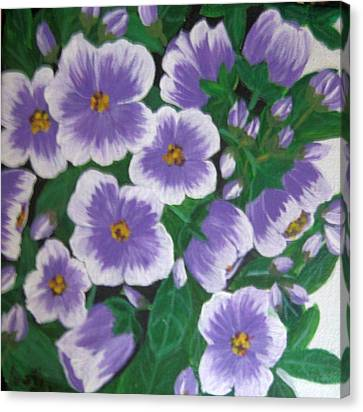 Pansies Canvas Print by Usha Rai