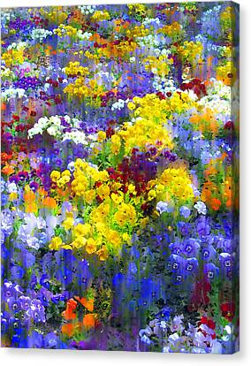 Pansy Party Canvas Print by Jessica Jenney
