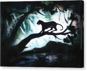 Panther Country Canvas Print by Dan Townsend