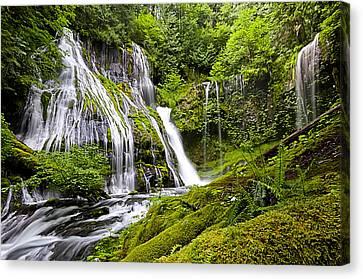 Panther Creek Falls Canvas Print by Brian Bonham