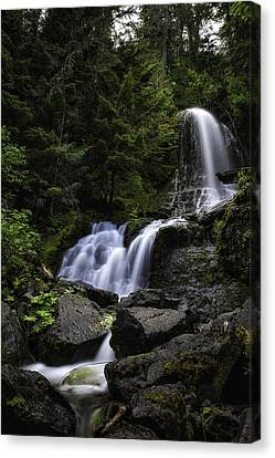 Panther Falls Canvas Print by James Heckt