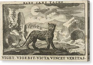 Panther In A Landscape, Jan Luyken, Jan Claesz Ten Hoorn Canvas Print by Jan Luyken And Jan Claesz Ten Hoorn
