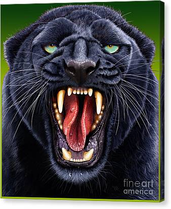 Panther Canvas Print by Jurek Zamoyski