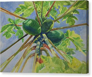 Canvas Print featuring the painting Papaya by Helal Uddin