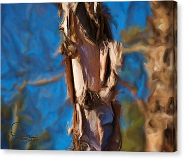 Canvas Print featuring the photograph Paper Bark Birch by Ludwig Keck