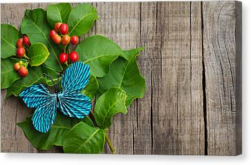 Paper Butterfly Canvas Print by Aged Pixel