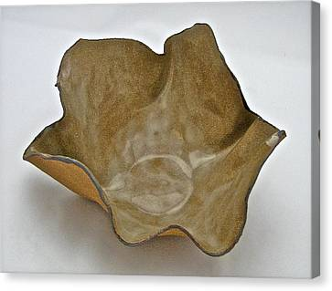 Paper-thin Bowl  09-010 Canvas Print by Mario Perron